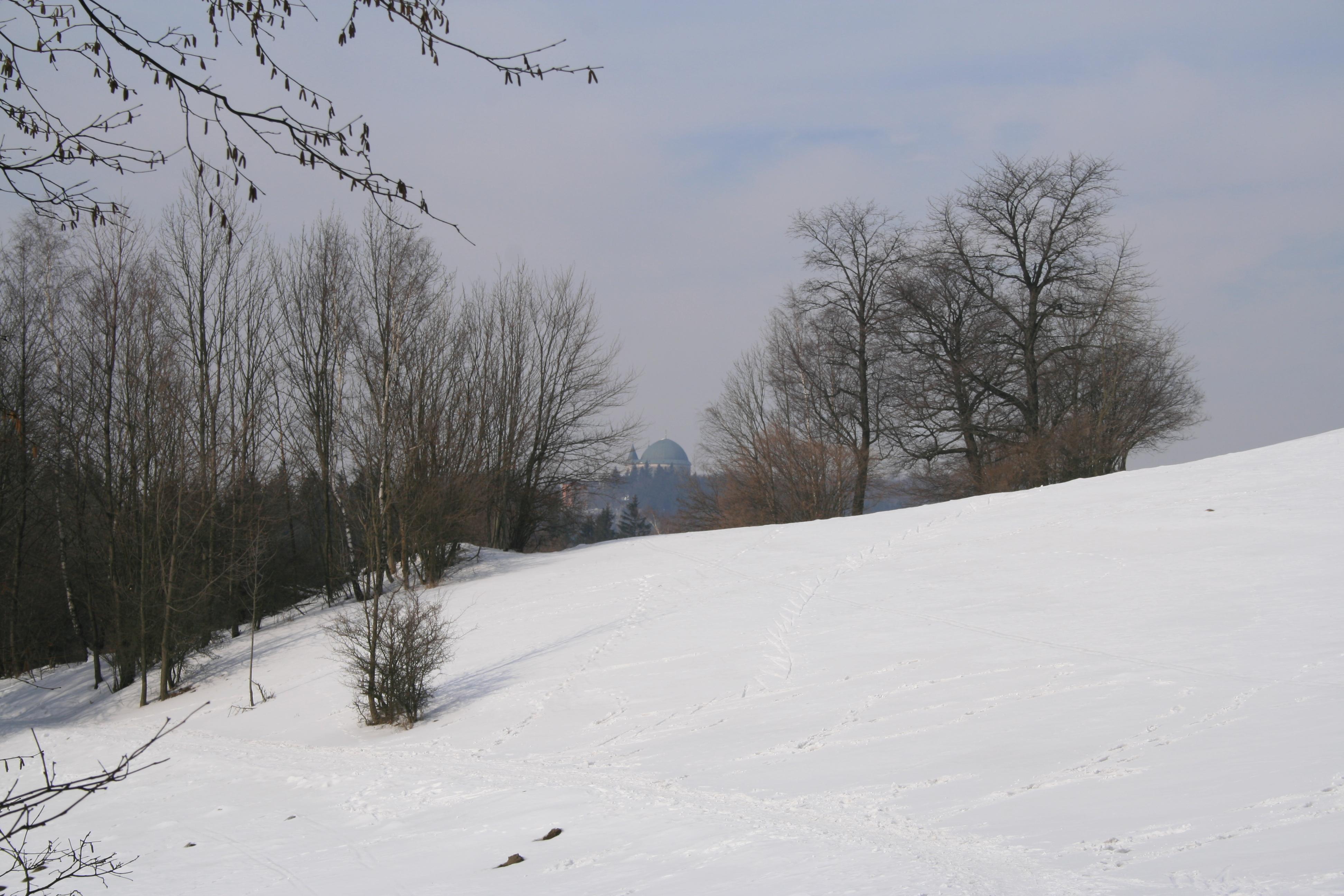 Obrázek - 44
